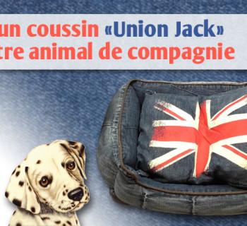 bloc_jeu_jardiland_coussin_union_jack