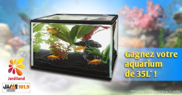 Gagnantes pour le jeu jardiland de la semaine 10 jaimeradio for Jardiland aquarium
