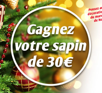 jeu_jardiland_sapin_noel_2017