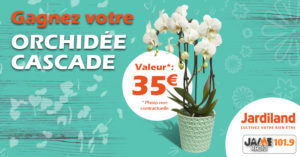 jeu_jardiland_orchidees_2018