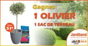 jeu_jardiland_olivier_terreau