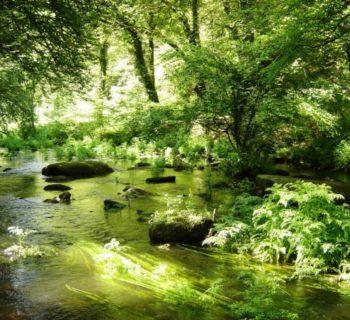riviere_scorff