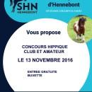 2016-11-13, affiche SHN