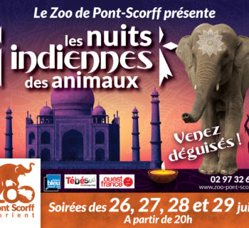 Affiche Nuits Indiennes horizontale