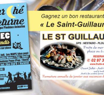 bloc_jeu_plouhinec_animation_bon_repas_saint_guillaume