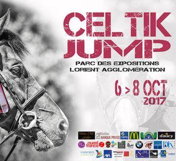 bloc_jeu_celtik_jump_2017