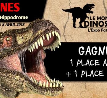 jeu_le_monde _des_dinosaures_Vannes