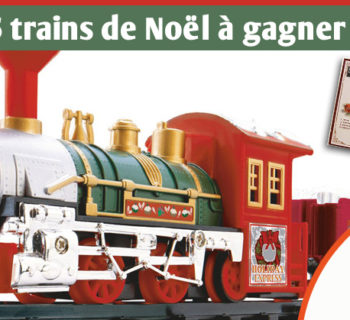 jardiland_trains_electrique_noel_2018
