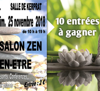 jeu_salon_zen_nov_2018
