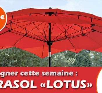 jeu_jardiland_parasol_lotus