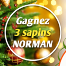 jeu_jardiland_sapin_noel_2019