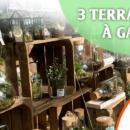 jeu_jardiland_terrarium_2020
