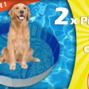 jardiland_piscine_chien_2020